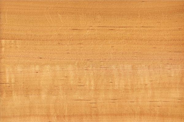 Alder - Best Wood for Pyrography