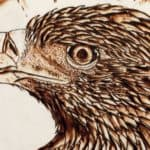 Pyrography for Beginners: How to Get Started with Wood Burning