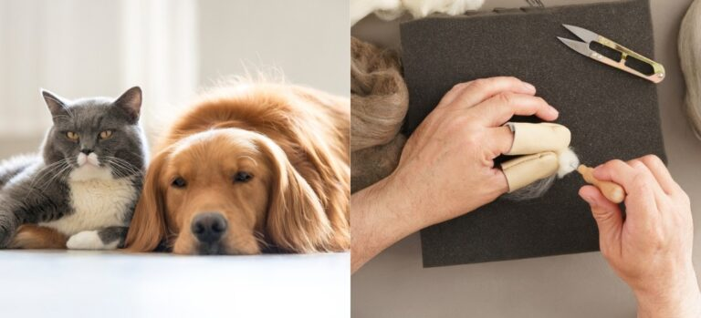 A cat snuggling with a Golden Retriever and a man needle felting a small ball of fiber.