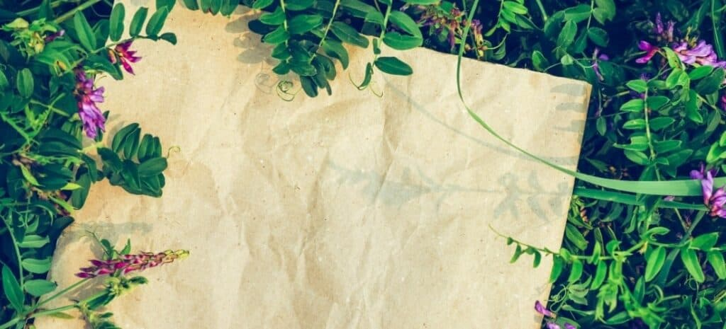 A piece of handmade paper surrounded by flowering plants.