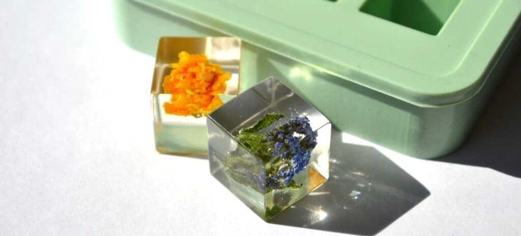 Two clear resin cubes with suspended flowers in front of a green mold.